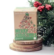 Christmas Tree In A Box Storage