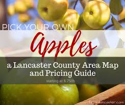 Pumpkin Picking Near Lancaster Pa by Pick Your Own Apples A Lancaster County Area Map And Pricing