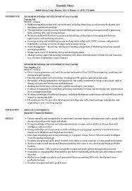 Download Senior Business Development Manager Resume Sample As Image File