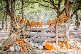 Pumpkin Patches Near Dallas Tx 2015 by Shadow Creek Pumpkin Farm Pumpkin Patch Art U0026seek Arts