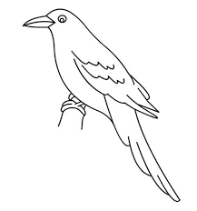 Kids Bird Coloring Picture