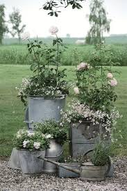 GARDEN A French Country Look With Rustic Metal Zinc Pots Galvanized Pails And Watering Cans Are All Great For Planting Their Lovely Muted Gray Tones