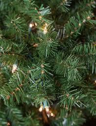 Unlit Christmas Tree by Christmas Tree Decorating Guide
