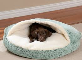 Trusty Pup Dog Bed by Comfortable And Pleasant Dog Nesting Bed Dog Bed Design Ideas