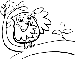Perfect Owl Printable Coloring Pages 21