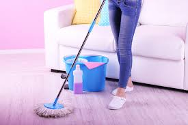 Haan Floor Steamer Stopped Working by Scrubbing Steamers Can Cut Your Housework By Half Haan Usahaan Usa