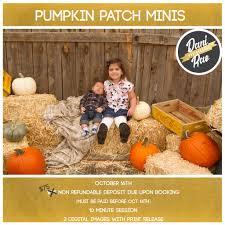 Albuquerque Pumpkin Patch 2015 by High Photographer In Albuquerque Dani Rae Albuquerque