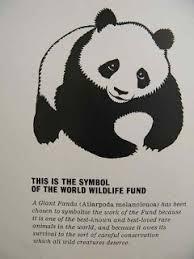 the way of the panda wwf at 50