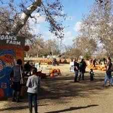 Pumpkin Patch Fresno Ca Hours by Uesugi Farms Pumpkin Park San Martin Ca Places To Go With The