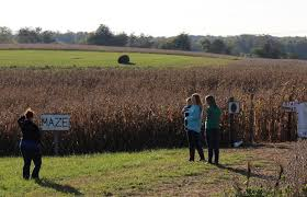 Pumpkin Picking Nyc 2014 by Area Farms Feature Pumpkins A Hayride And A Zoo Clarksvillenow Com