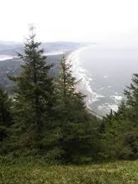 Manzanita Oregon Coast Cabins