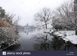 xihu qu 2018 avec photos winter on lake hangzhou with leifeng pagoda in the