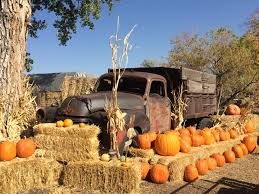 Colorado Pumpkin Patch by Best Pumpkin Patches In Boulder County U2013 The Exploring Co