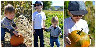 Pumpkin Patch Prescott Az 2015 by A Day At The Pumpkin Patch Mortimer Farms Recipe For A Sweet Life