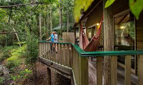 100 Treetops Maleny Montville Accommodation Couples Romantic Getaway Sunshine