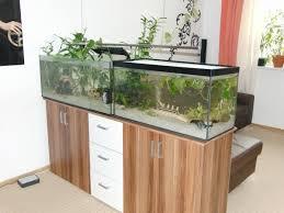 aquarium als raumteiler benutzen 26 beispiele archzine net