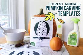 Corpse Bride Pumpkin Carving Stencils by Animal Pumpkin Carving Templates Youtuf Com