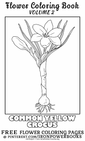 Free Flower Coloring Pages