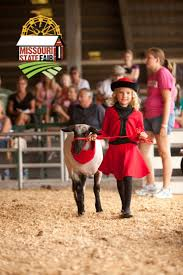 Halloween Express Milwaukee State Fair by Young Exhibitor And Her Sheep In The Leadline Competition