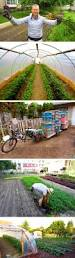 Tuftex Deck Drain Slope Bracket by 370 Best Greenhouses Images On Pinterest Greenhouse Ideas