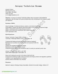 Biology Teacher Resume Examples Unique Education Template Word Beautiful In Microsoft