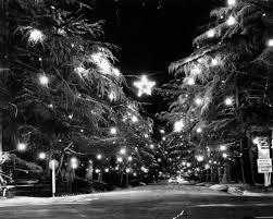 Christmas Tree Lane Los Angeles