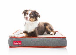 Bolster Dog Bed by Brindle Waterproof Designer Memory Foam Pet Bed U0026 Reviews Wayfair