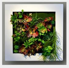 Plant Wall Art Online Buy Wholesale Artificial Succulents Flower From China