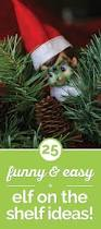 Pickle On Christmas Tree Myth by 253 Best Images About Celebrate Christmas On Pinterest Reindeer