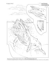 Hooray For Humpbacks Nat Geo Education Geography Blog Letter X Coloring Pages