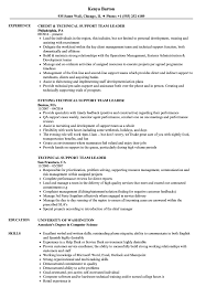 Resume Templates Team Leader Technical Support