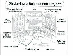 12810 Science Fair Project Ideaspdf