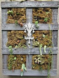 Anythingology Vertical Pallet Garden Before After