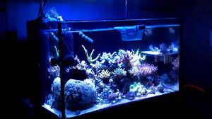 led aquarium light controller pololu controller dimming diy led aquarium lights