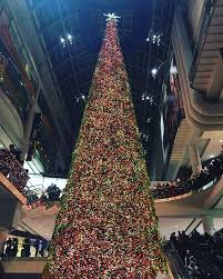 Canadas Biggest Christmas Tree Ongoing