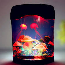jellyfish mood l troubleshooting 29 images discovery led