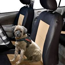 Pet Approved EVA Foam Waterproof Seat Covers Pet Seat Cover Reg Size Back For Dogs Covers Plush Paws Products Car Regular Black Dog Waterproof Cars Trucks Suvs My You And Me Hammock Amazoncom Ksbar With Anchors Single Front Shop Protector Cartrucksuv By Petmaker On Tinghao Universal Vehicle Nonslip Folding Rear Style Vexmall Seat Cover Lion Heart Pets Lhp1 Heart Approved Eva Foam With Suvs And