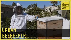 Urban Beekeeping // 60 Second Docs - YouTube Docs Bar Grill Montrose American Food Burgers Tex Choice Grain Free Adult Dog Qc Supply Summer Documentary Lab Residency Uniondocs Backyard Made Me Feel At Home Kc College Gameday Magical Moments Doc Mcstuffins Stethoscope Disney Part 45 Bazetta Township Park Design 2 Shows Austin Bring Art Community Collaboration To The Nothing But Love Between Motworks And Bobby Heugel Eater Google Drive Blog Research Tool Updates Quick Access Your Docs Holiday Southern Shores Realty