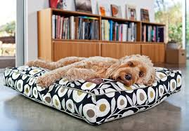 Bowser Dog Beds by Pick The Perfect Bed For Your Dog And Decor Nola Com