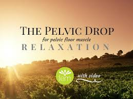 Hypertonic Pelvic Floor Muscles by The Pelvic Drop To Relax Your Pelvic Floor Pelvic Floor Muscles