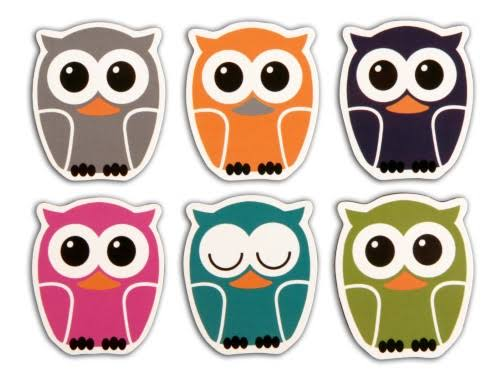 Kikkerland Owl Magnet - Set of 6