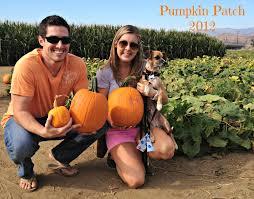 Pumpkin Patch Bakersfield by The Scurlock Scene October 2012