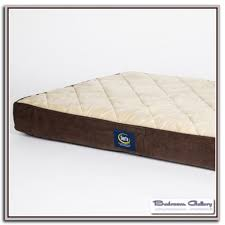 Serta Dog Bed by Rv Murphy Bed Bedroom Galerry