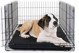Chew Proof Dog Beds by Chew Proof Dog Beds By K9 Ballistics