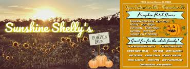 Pumpkin Patches In Oklahoma by Sunshine Shelly U0027s Pumpkin Patch Home Facebook