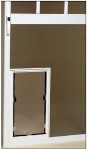 pet doors for screen doors dog doors and cat doors