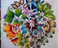 Mandala Owls Secret Garden De Corujas Jardim Secreto Johanna Basford Coloring BookSecret