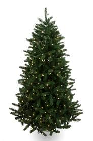 4 Ft Pre Lit Christmas Tree Asda by Can You Tell Which Christmas Trees Are Luxury Daily Mail Online