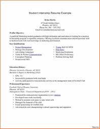 Chic Resume Profile Examples Internship On Sample Accounts College Student Academic Intern Graduate