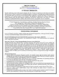 Program Manager Resume Sample Lovely Perfect Mis S Documentation Template